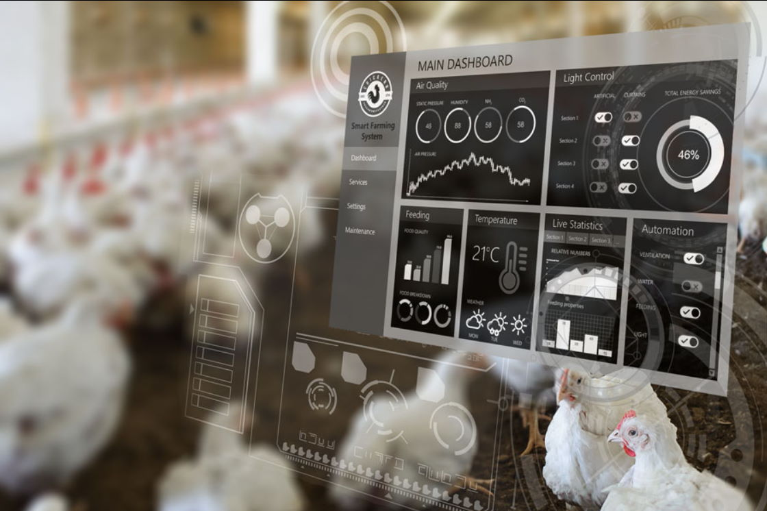 XL Smart Poultry IOT