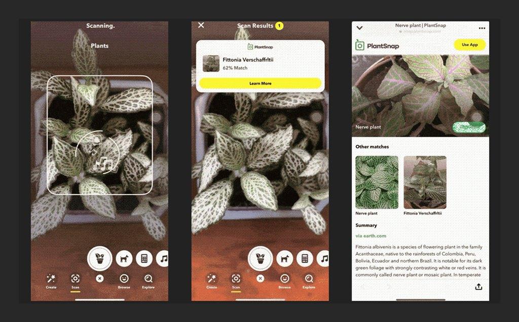 Fitur Snapchat PlantSnap