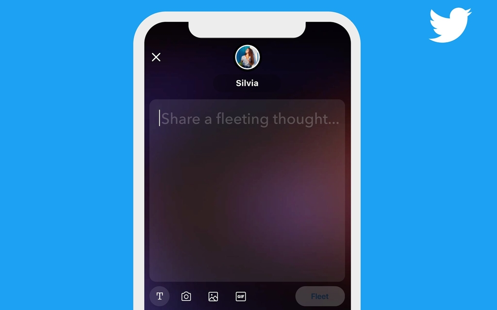 Twitter Fleets 02